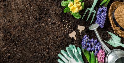 friendly-gardening