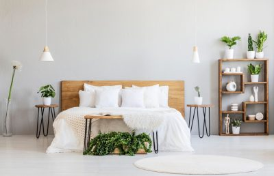 Bed Bug Removal Cost Guide